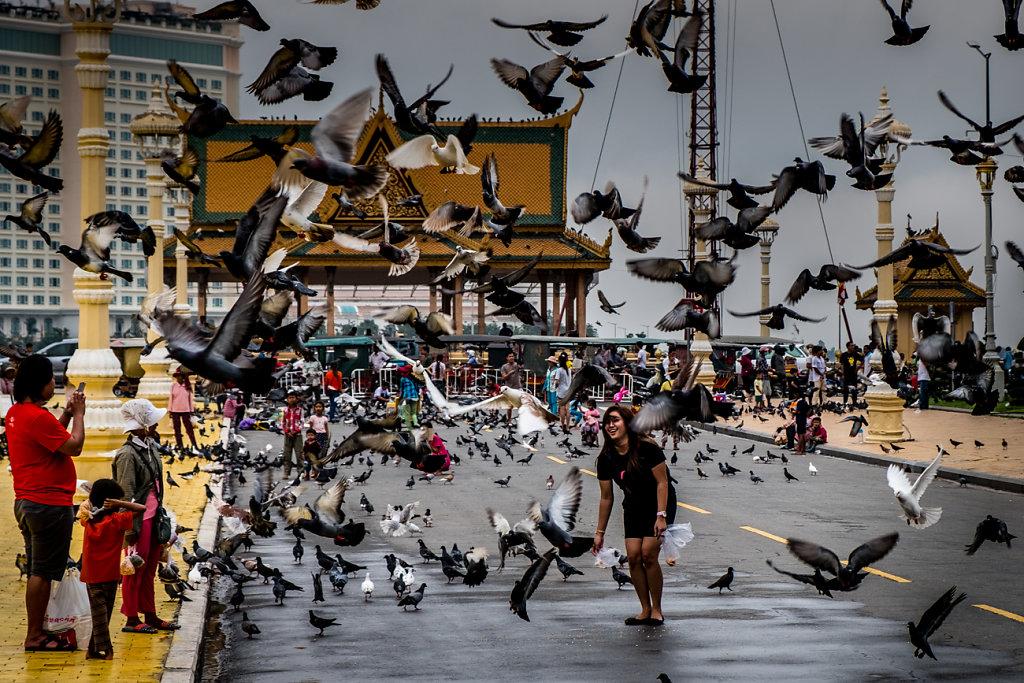 Cambodia-Doves