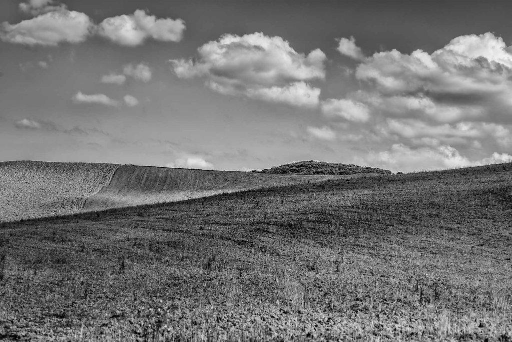 Tuscany Black&White